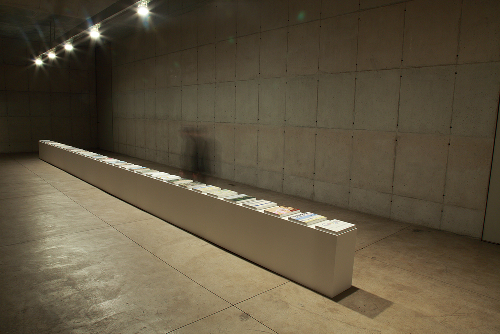 Search: Ericka •2009• 35 pinturas a óleo• 30 x 40 cm (cada) • Coleção MAM - Museu de Arte Moderna de São Paulo