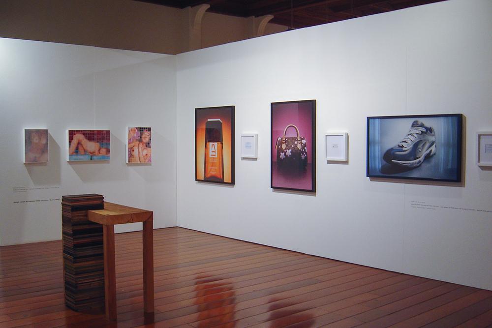 30º SARP – Salão de Arte de Ribeirão Preto Nacional Contemporâneo • MARP, Museu de Arte de Ribeirão Preto • Agosto de 2005 • Prêmio aquisição