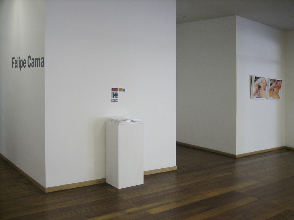 Solo show at MAB - Blumenau Museum of Art, in Blumenau, Brazil. 2006.