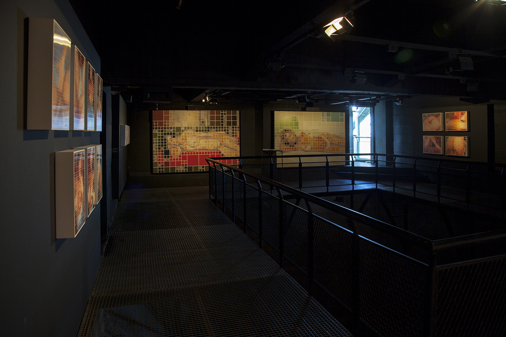 Individual  fw: enc: attach  na Galeria Lunara do Centro Cultural Usina do Gasômetro, em Porto Alegre. De dezembro de 2008 a março de 2009.
