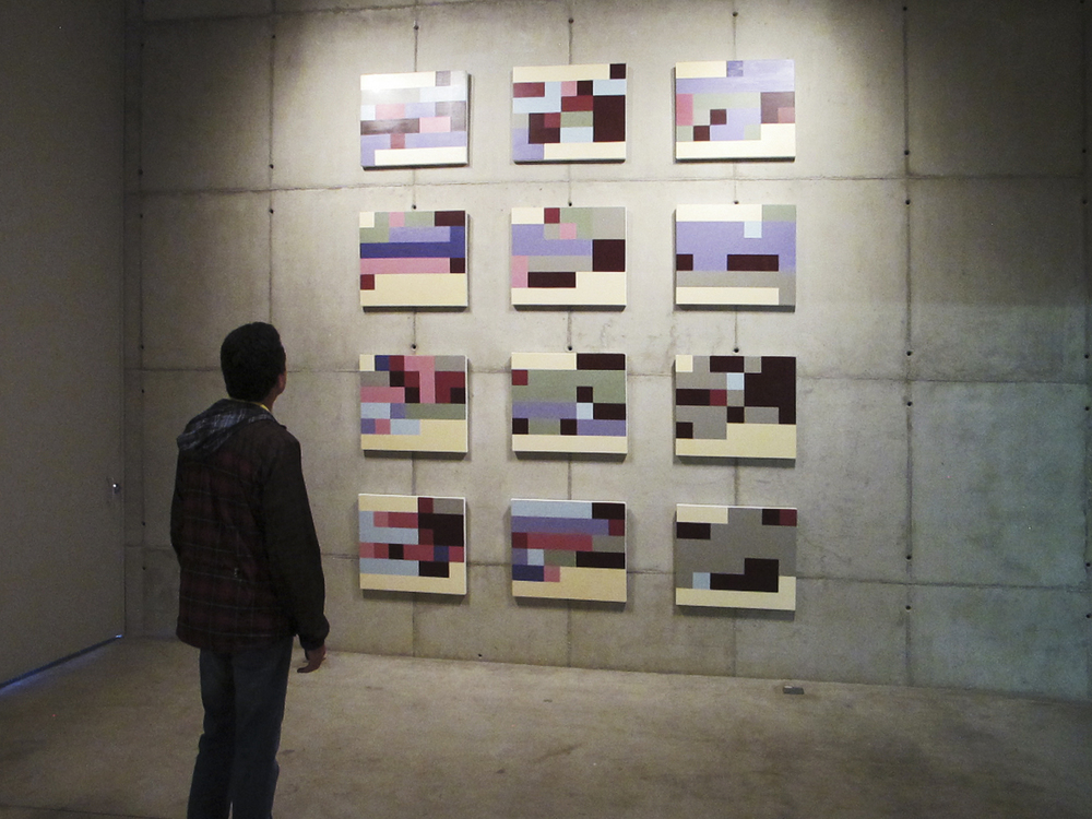 Statistical Self Portraits   , solo show at   Galeria Leme. October 2012.