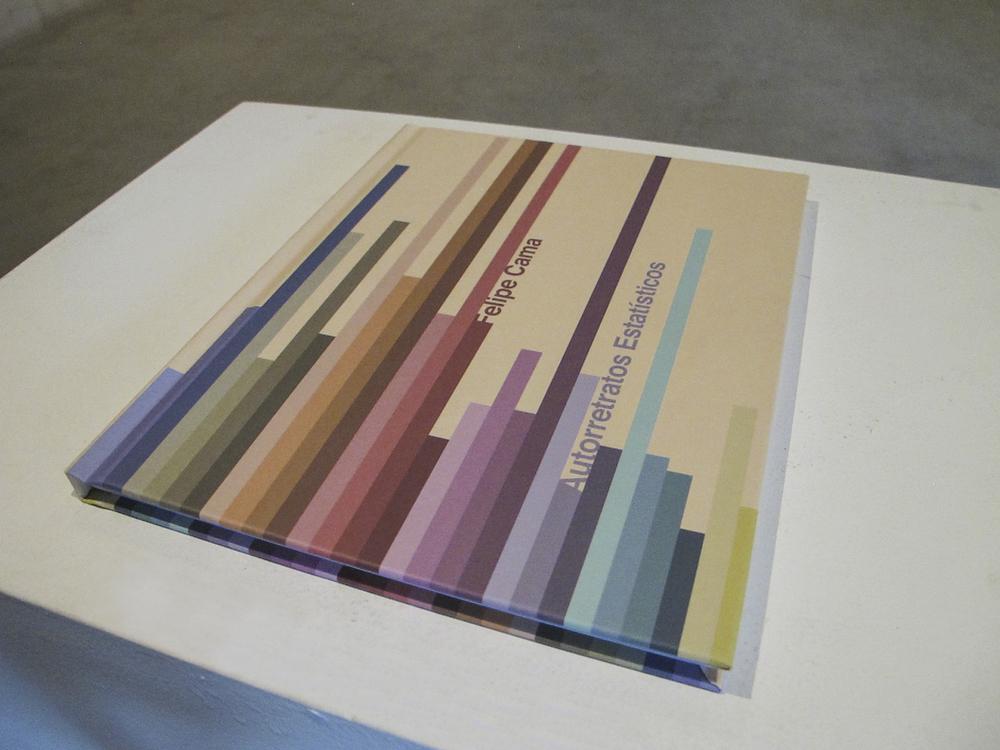 Exposição  individual A   utorretratos Estatísticos  , na Galeria Leme. Outubro de 2012.  Clique para ver o livro.