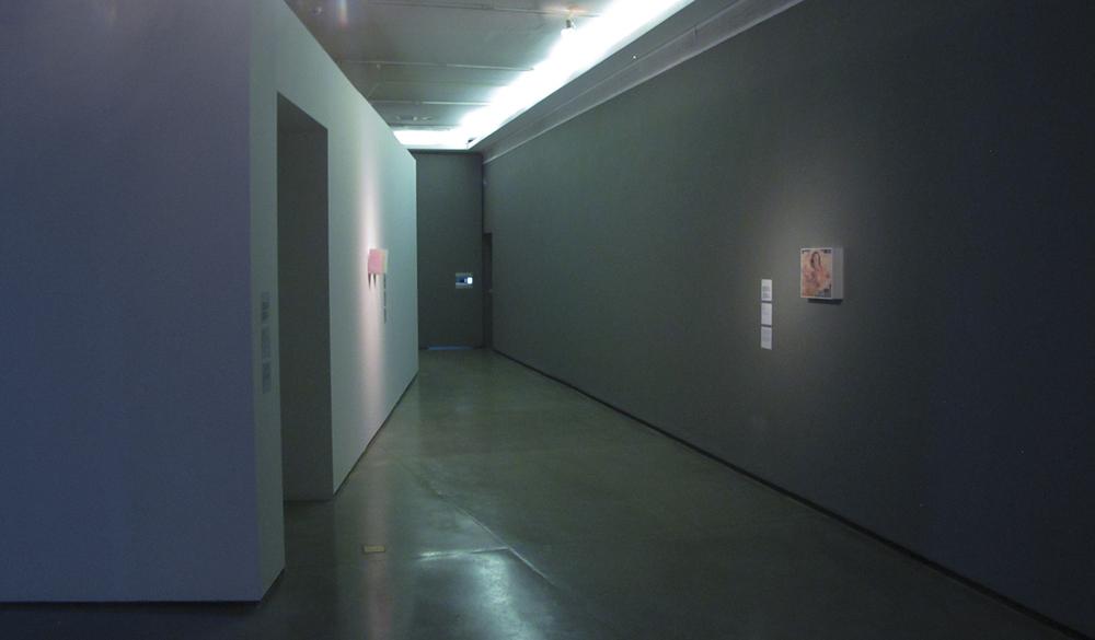 Exposição coletivaCircuitos Cruzados, o Centre Pompidou encontra o MAM, no MAM-SP, em janeiro 2013.Curadoria Christine Van Assche e Paula Alzugaray.