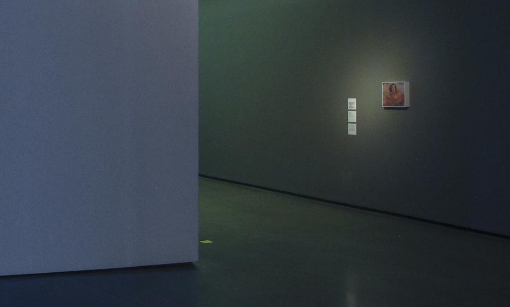 Exposição coletiva  Circuitos Cruzados, o Centre Pompidou encontra o MAM  , no MAM-SP  , em janeiro 2013.  Curadoria Christine Van Assche e Paula Alzugaray.