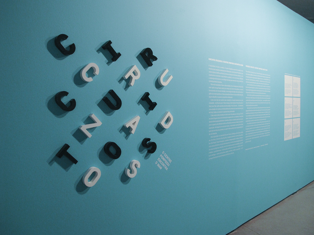 Exposição coletiva  Circuitos Cruzados, o Centre Pompidou encontra o MAM , no MAM-SP, em janeiro 2013.Curadoria Christine Van Assche e Paula Alzugaray.