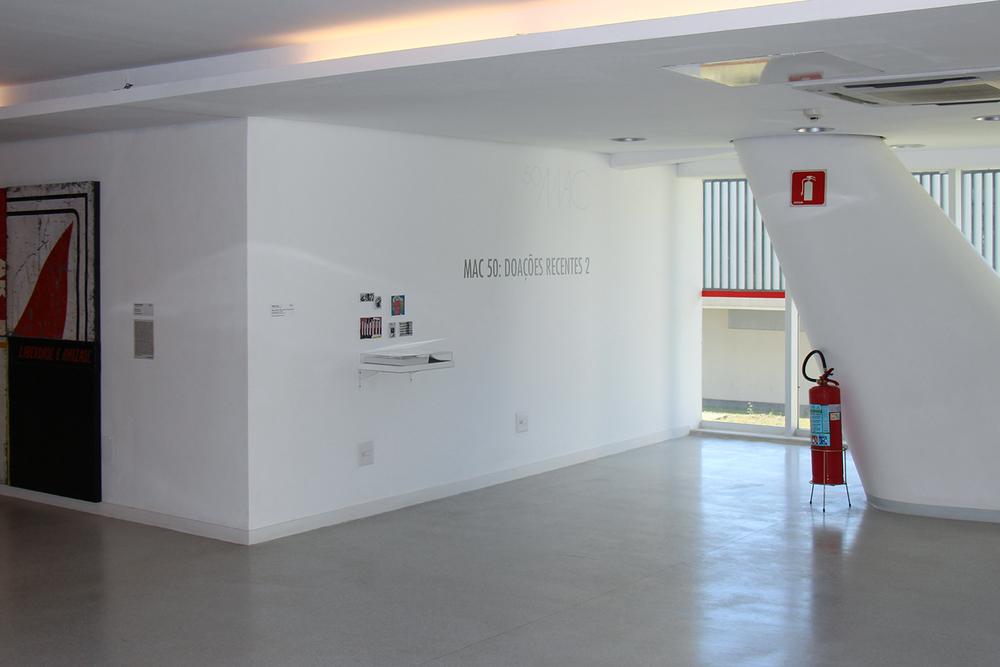 Exposição coletiva  MAC 50: Doações Recentes 2  no MAC/USP, São Paulo, fevereiro 2013.  Curadoria Tadeu Chiarelli.