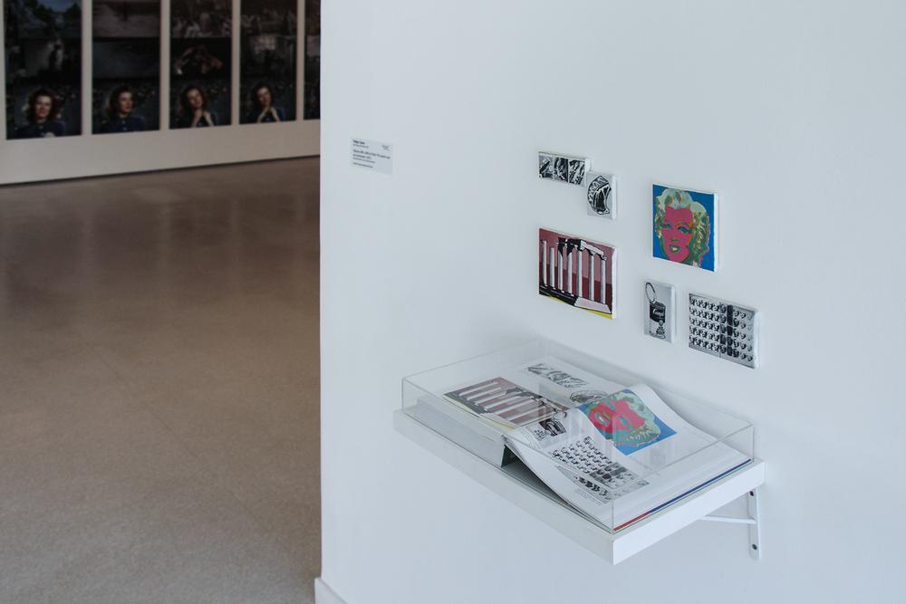 Exposição coletivaMAC 50: Doações Recentes 2no MAC/USP, São Paulo, fevereiro 2013.Curadoria Tadeu Chiarelli.