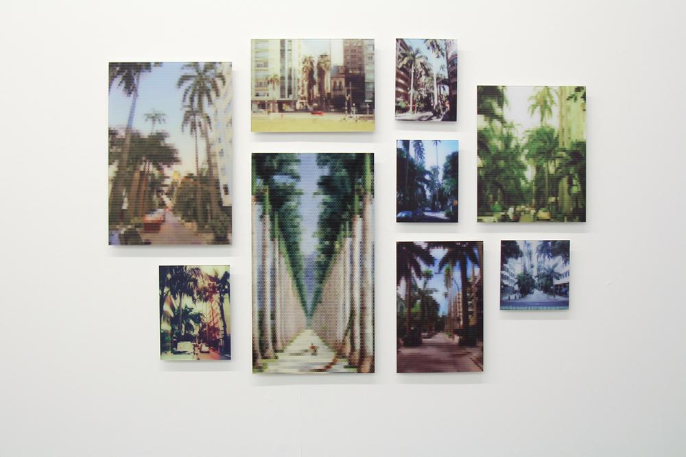 Avenida de Palmeiras Imperiais (Rua Paissandu)•2010/2015 • Impressão em metacrilato e impressão em papel algodão • Dimensões variáveis