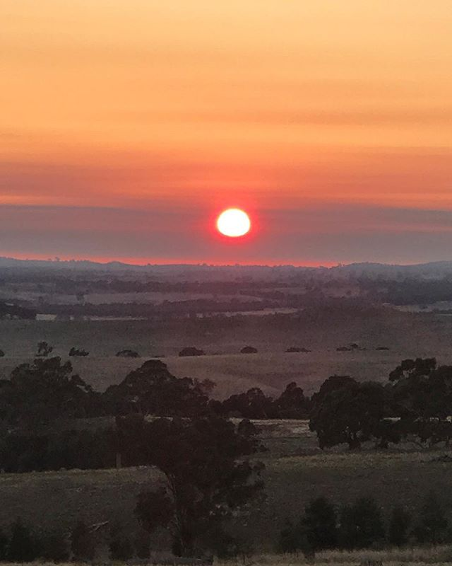 Autumn sunrise 🙌🏼 First day of May and the fire restrictions are off - in my travels today I've seen bonfires burning in paddocks & back yards - all the smoke sure does make for spectacular sunrises & sunsets 🍂 #morningwalk #sidonia #autumnsunrise #granitecountry #thefloralforager