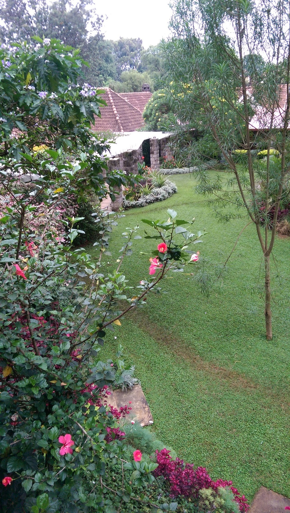 A view of the beautiful garden at Amani Gardens Inn
