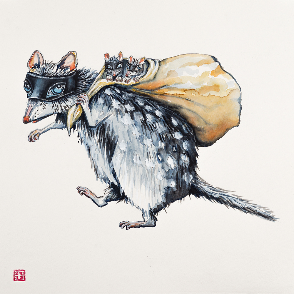 'Steal of Quolls' (2015) Helen Kocis Edwards