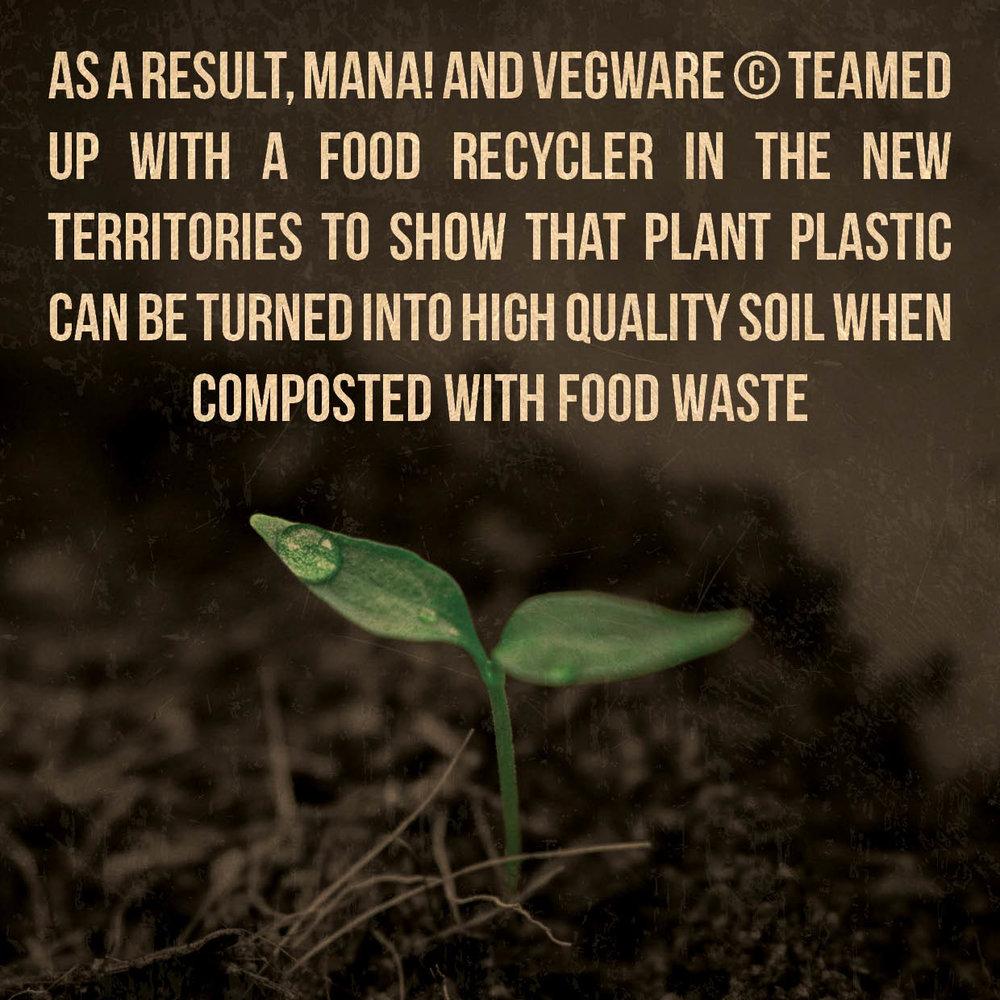 MANA! Sustainability Report 1B - 2019.043.jpg