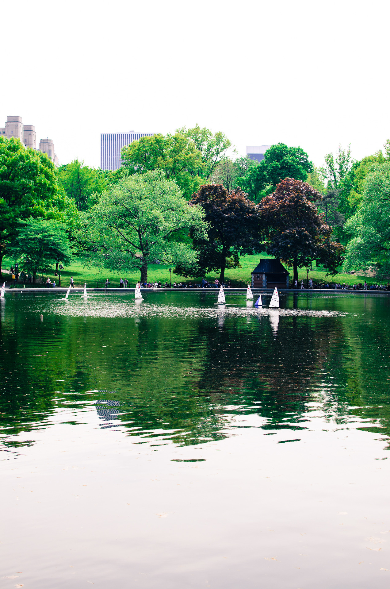 Conservatory Water, Central Park.