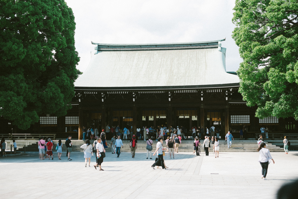 The Meiji Shrine in Harajuku.