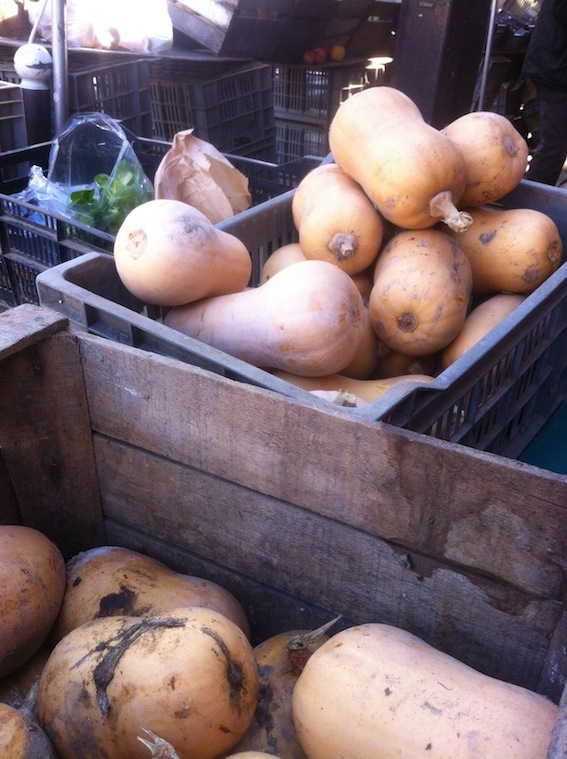 Butternut squash grown in Cergy-Pontoise 31 miles from Paris