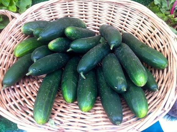 Cucumbers at Marché Biologique des Batignolles