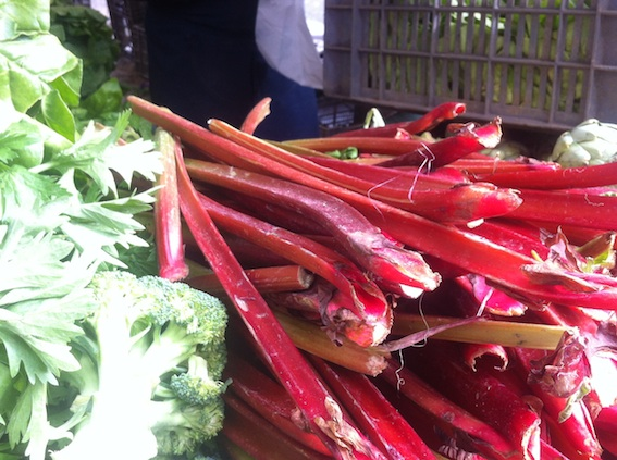 Locally grown rhubarb