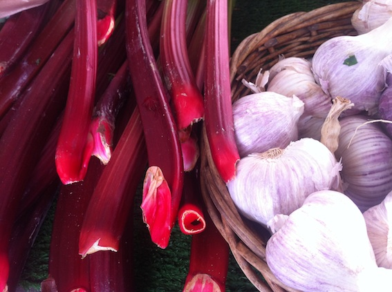 Rhubarb and fresh garlic at Jean-François Dondaine's market stand