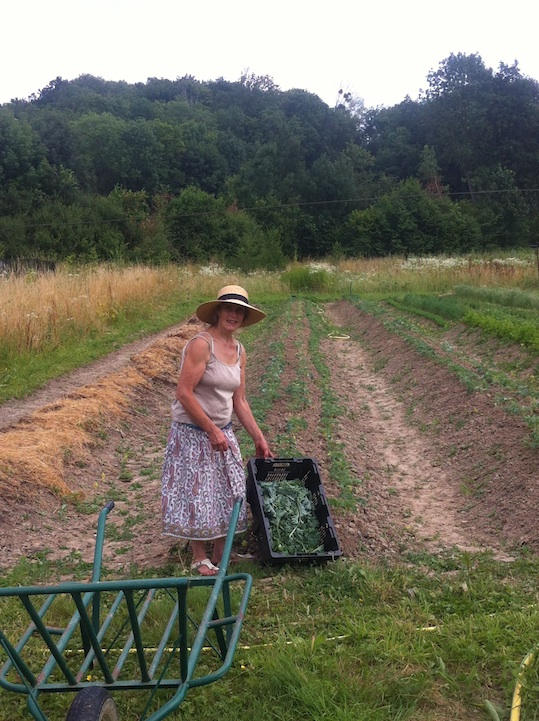 Hermione Boehrer at her organic farm in Coulommiers, France