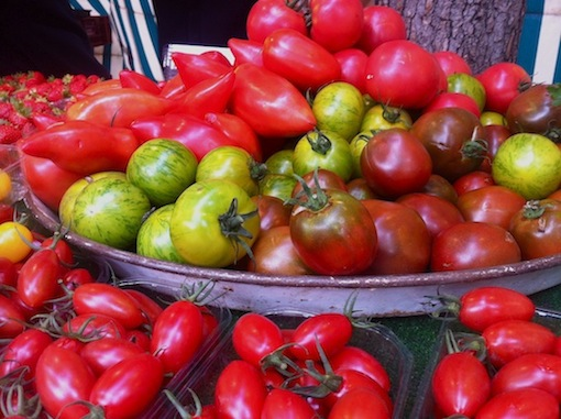 Autumnal tomato harvest at Marché Convention