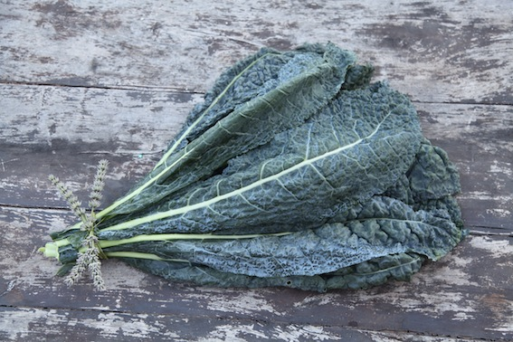 **** one of many kale varieties