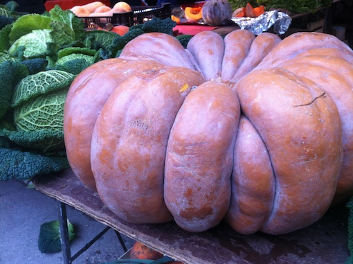 Fairytale Pumpkin at Marché Daumesnil