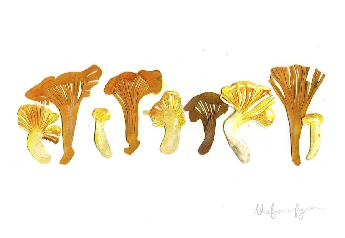Illustration by Jessie Kanelos Weiner, thefrancofly.com
