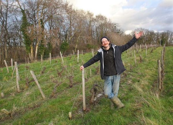 Ben in our plot of Gamay vines