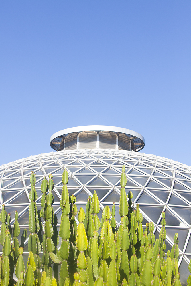 botanicgardens-0336web.jpg