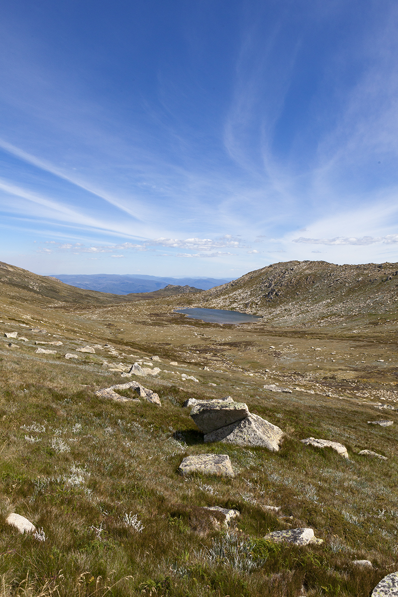 Mount Kosciuszko - Read More