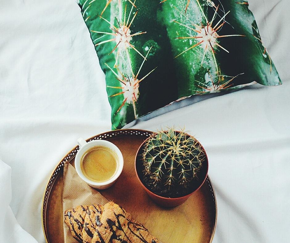 Jasiek-kaktus:  hugthestuff.com