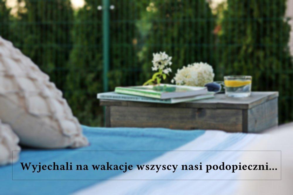 #babamadom_lezakogrodowy_00.jpg
