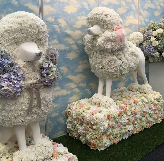 Yes, thats right.. A poodle made of flowers!!! Well done team  RickyPaulFlowers