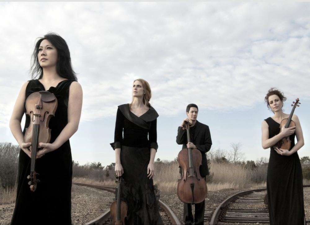 Daedalus Quartet. Photo credit:Lisa-Marie Mazzucco