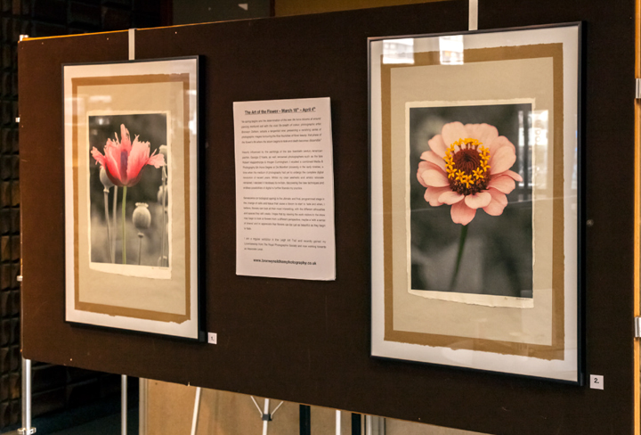 'Art of the Flower' Exhibition - March 2013