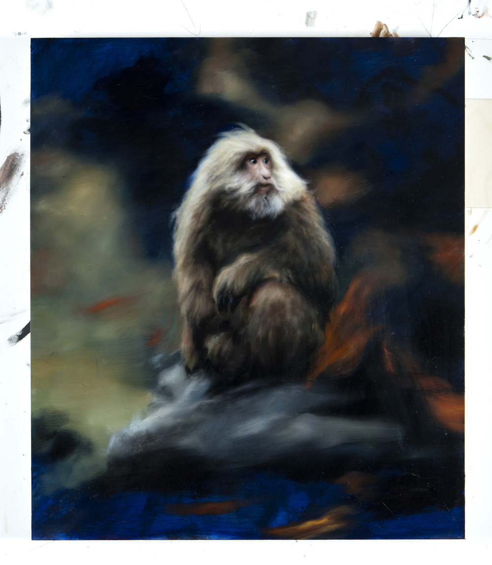 Hugo Wilson, Chaos Monkey, 2015, oil on board, 100 x 116 x 8 cm, ph. Niccolò Margutti, courtesy ProjectB gallery