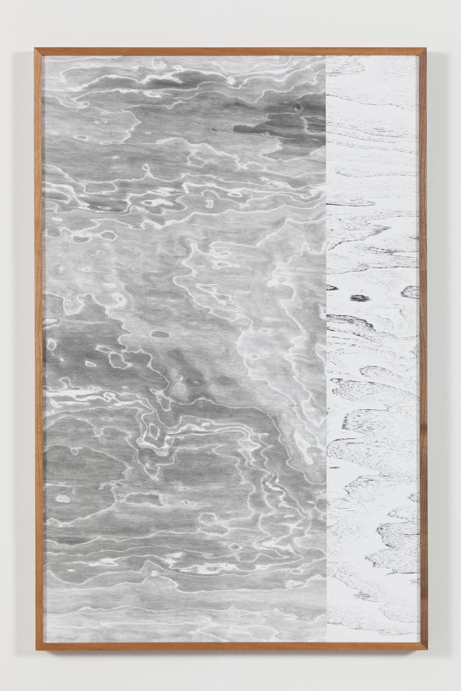 Lisa Oppenheim, Landscape Portraits (Some North American Trees), 2014. 5 stampe in b/n ai sali d'argento, pezzi unici, montate fuori registro in cornici originali. Ogni elemento: 98 x 64,45 cm (con cornice) (Courtesy Galleria The Approach, Londra)