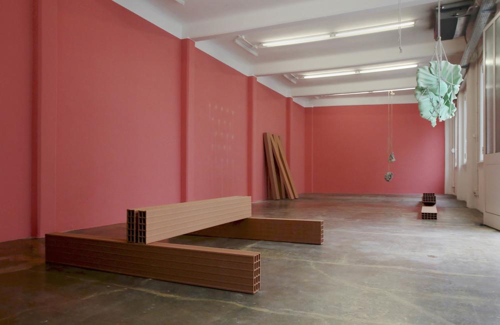 Morgane Tschiember, installation view