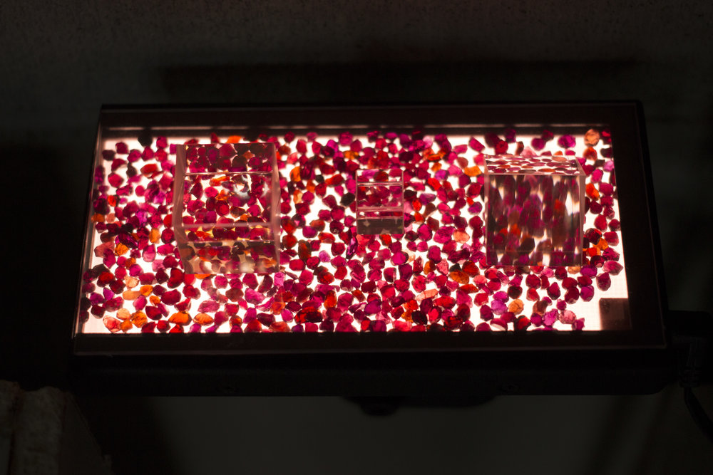 A light for myrmomancy,  2015; Chrome pyrope garnets (anthill garnets), optic prisms, filters, led light, glass, cables. Images from the exhibtion 'Co-Workers : Beyond Disaster' at Bétonsalon, Paris.