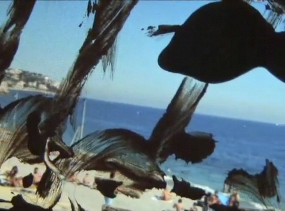 Wantee , 2013; Still da video; 14 min. 24 sec.; Courtesy the artist and carlier | gebauer, Berlin; Nathalie Obadia, Paris
