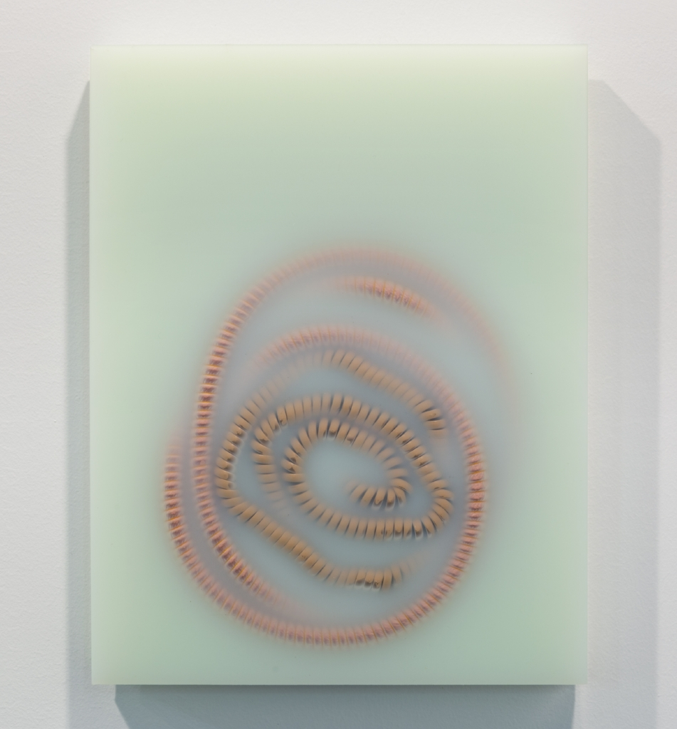 Panel, Green , 2016, Platinum Silicone with pigment, telephone line, hookah hose, Courtesy of the artist and Kayne Griffin Corcoran, Los Angeles.