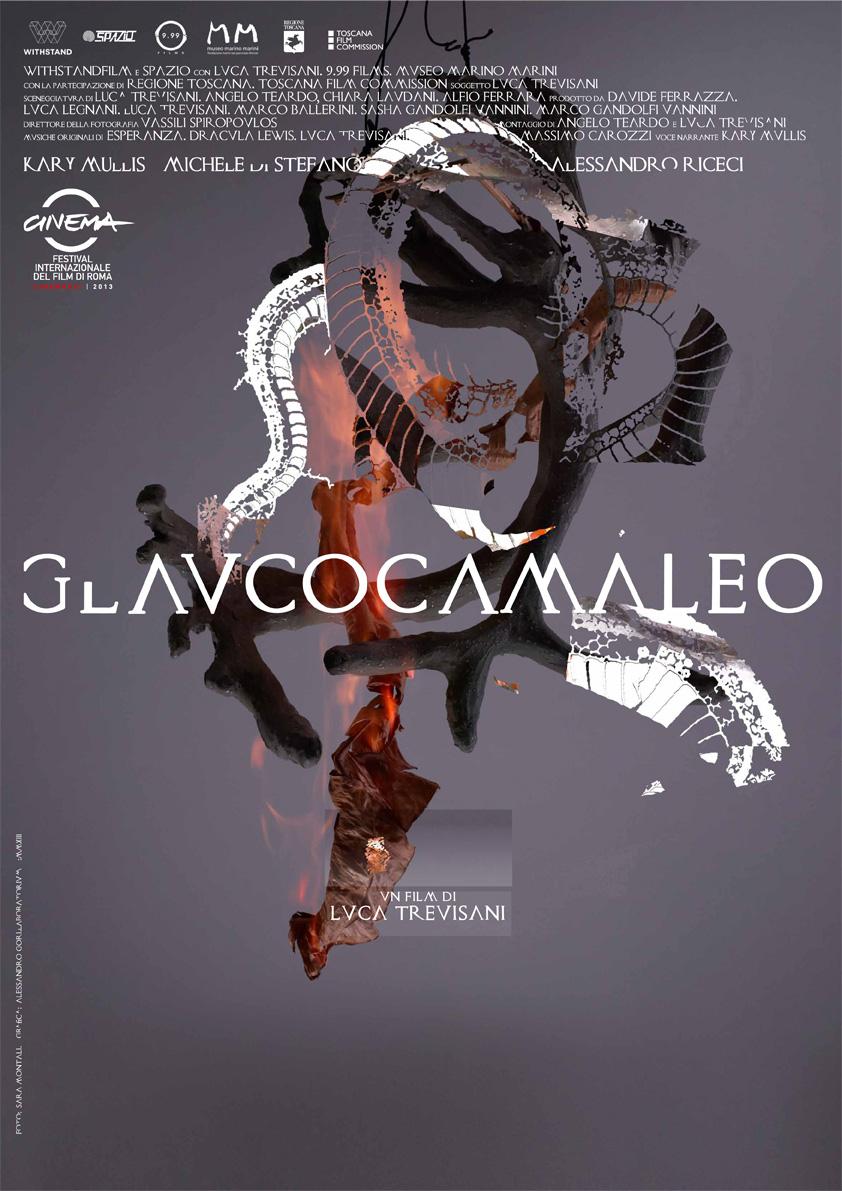 CLAUCOCAMALEO, 2013. Poster design