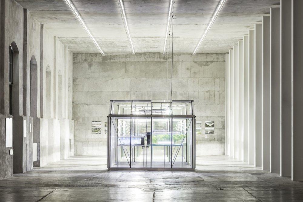 """View of the exhibition """"Extinct in the Wild"""" curated by Michael Wang Fondazione Prada, Milan. Photo Delfino Sisto Legnani and Marco Cappelletti. Courtesy Fondazione Prada"""