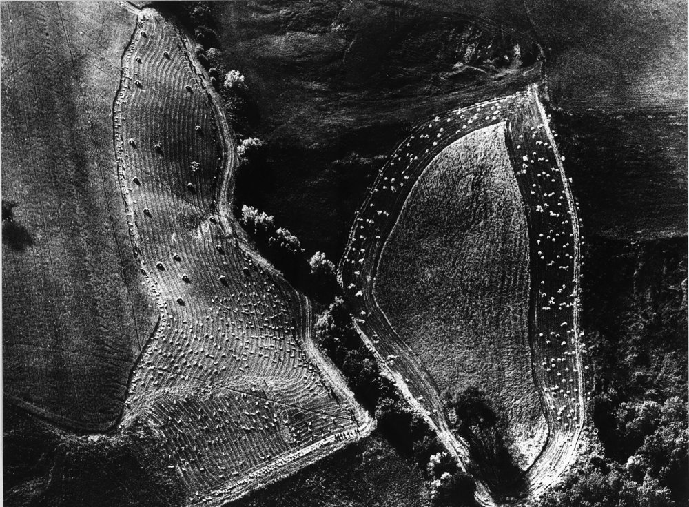 Mario Giacomelli,   Paesaggio  (1979), from Storie di terra. Private Collection, Bergamo