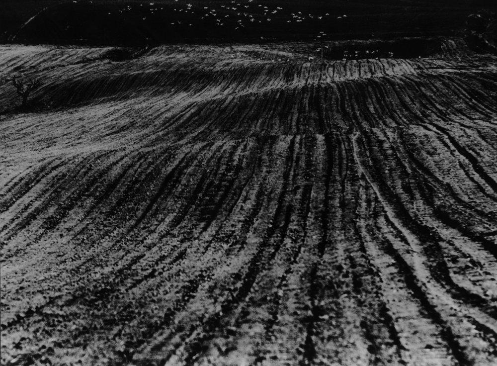 Mario Giacomelli,  Paesaggio , from La Buona Terra (1964-1965). Pivate Collection, Bergamo