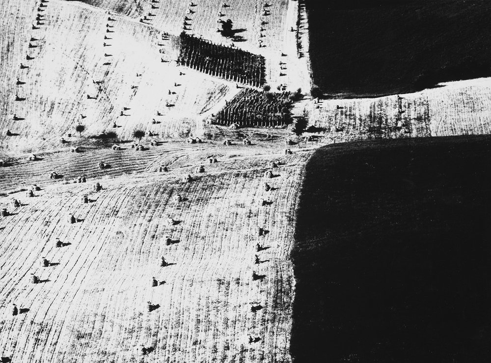 Mario Giacomelli, Metamorfosi della terra ( '60 / '70). Courtesy Archivio Mario Giacomelli – Rita Giacomelli