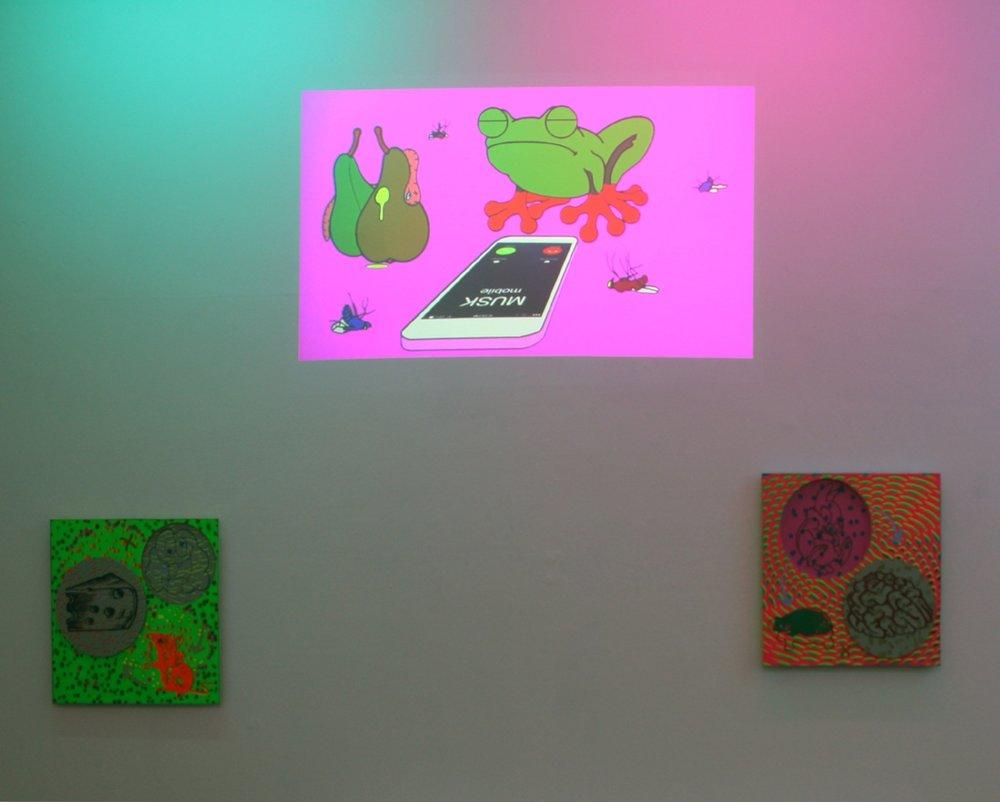 IMT installation view