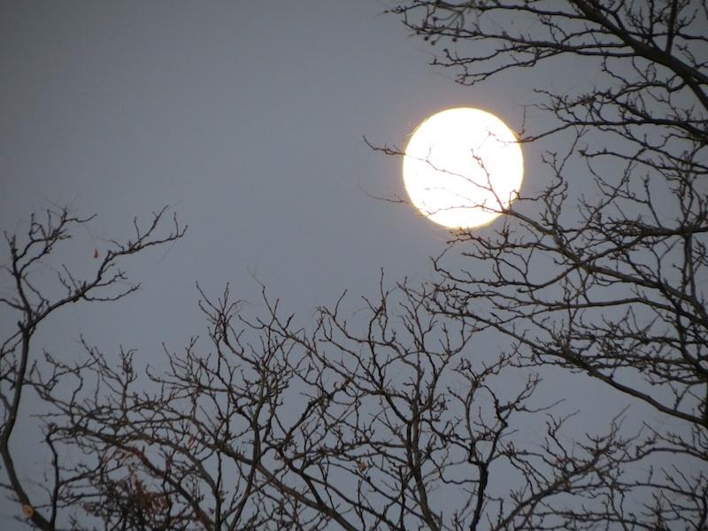 moon set.jpg