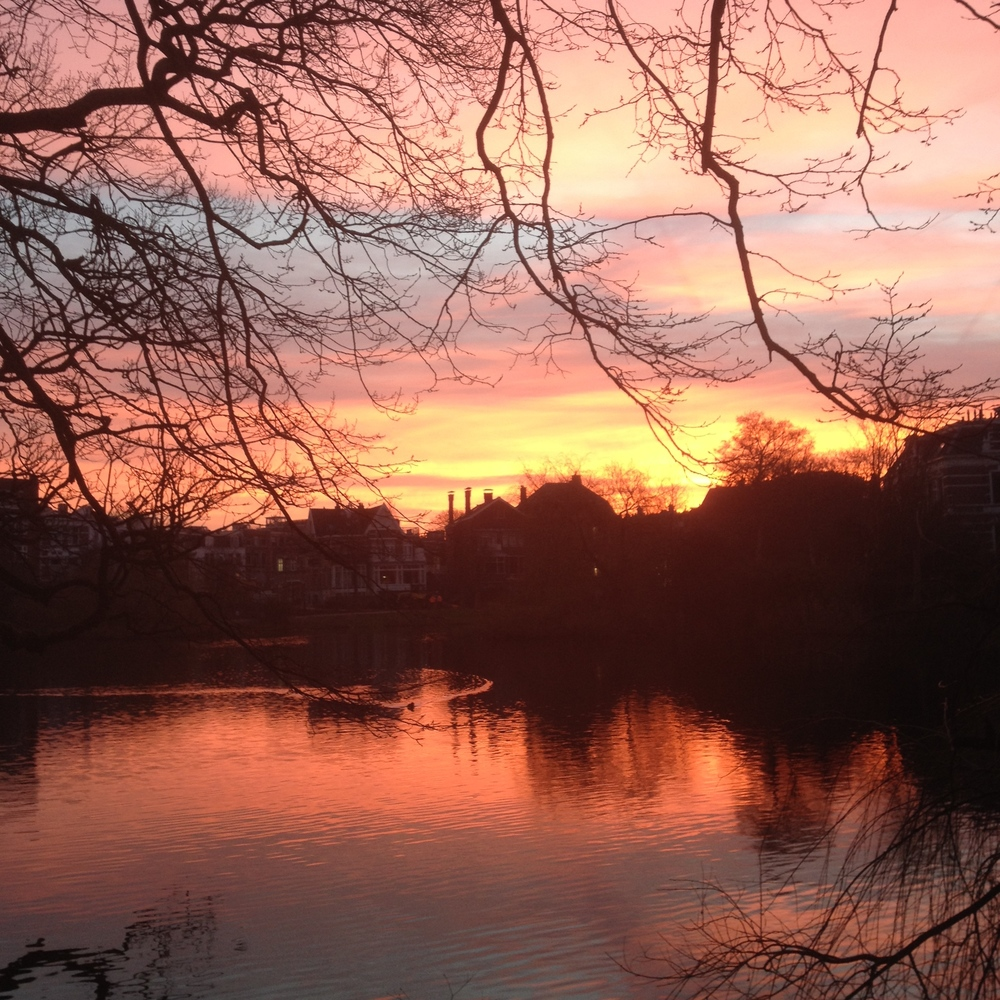 Sunset, Vondelpark series 2014