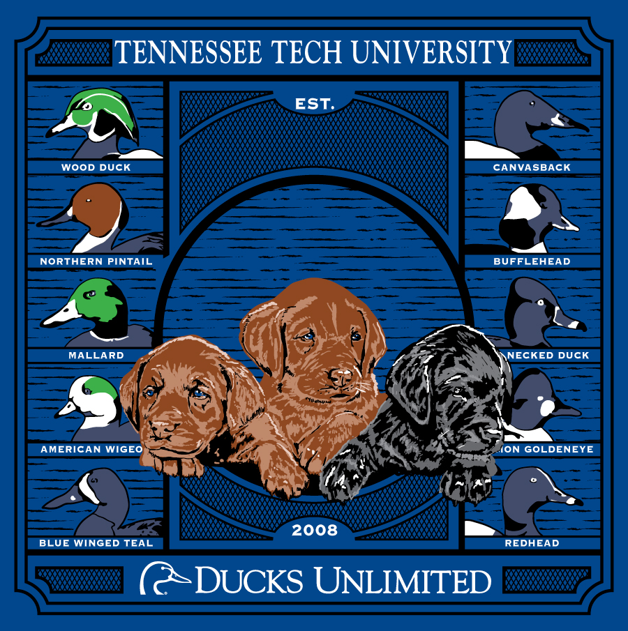 Ducks-Unlimited.jpg